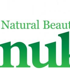 Anukis Logo original