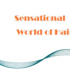 Sensation_world_of_hair_logo